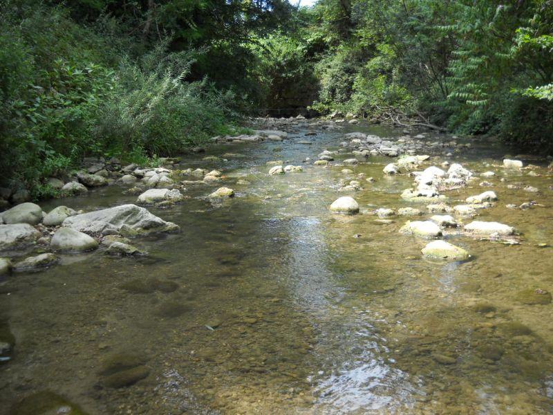 Fiches actions : vue de la rivières Usses
