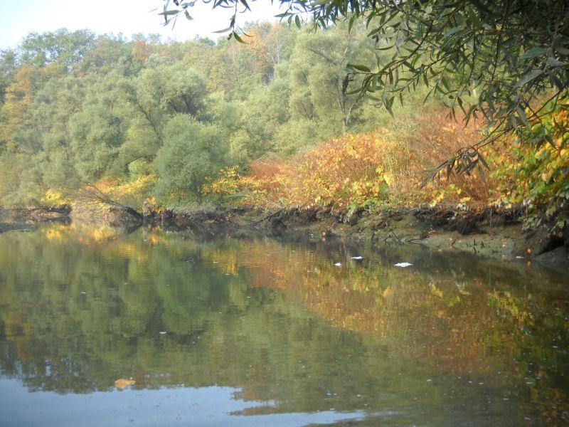 Fiches actions : Vue sur la rivière Usses