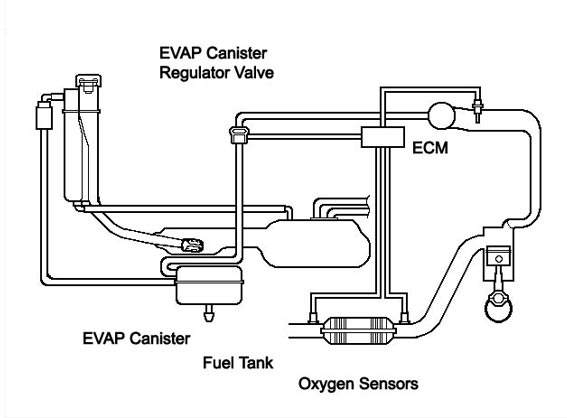 Chevy Evap System Diagram. Chevy. Wiring Diagram Images