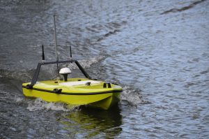 Platform control system for small electric boats