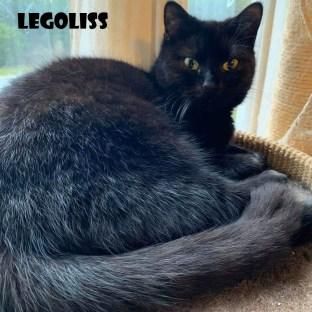 Legoliss