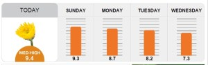 pollen count for this week