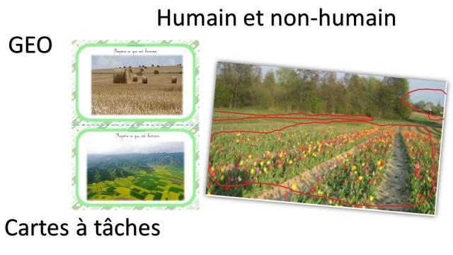 Géographie travailler le paysage en cartes à tâches humain et non-humain