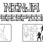 Ninja perception training