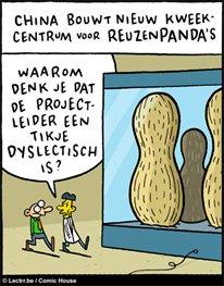 (c) Dyslexieweb