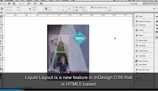 Indesign Cs6 Tutorial Creating Interactive Pdf Forms
