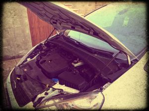 Hydraulické vzpery pre Ford
