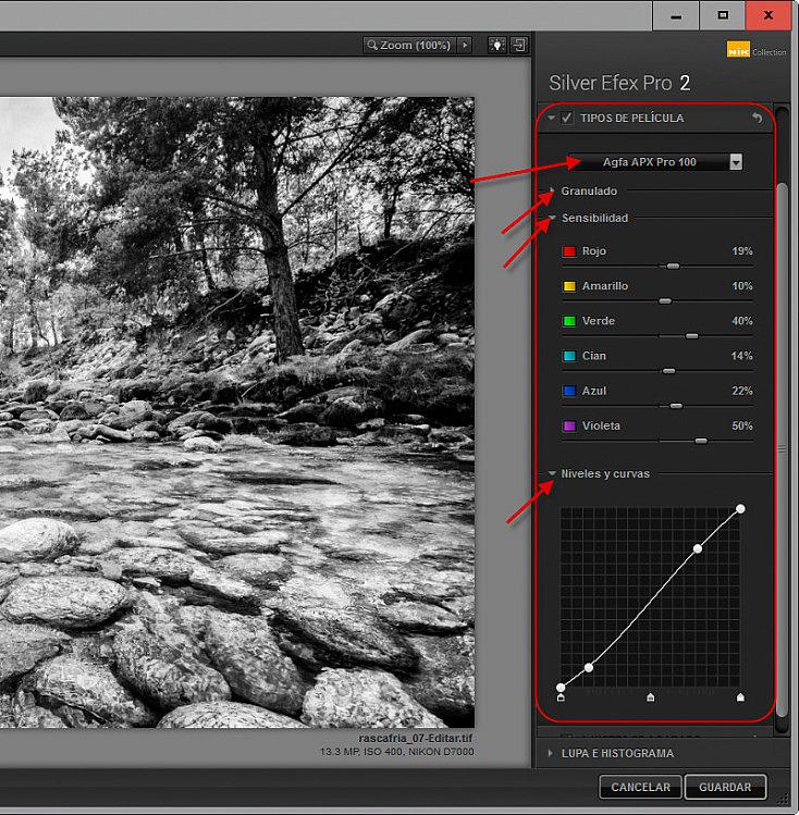 Silver Efex Pro 2 - Tipos de película