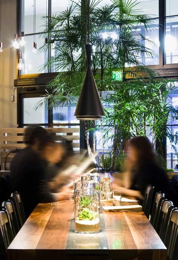 pendant kitchen lighting high end sinks plant café: pier 3 san francisco building, the embarcadero ...