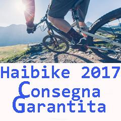 haibike-2017-consegna-garan