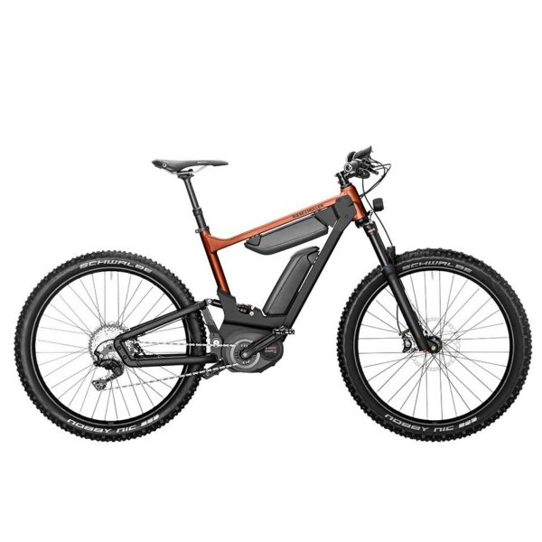 Riese & Müller Delite Mountain 2019 • e-bike lovers