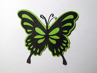 butterfly-1510_anyssa-400w