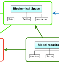 the main goal of the platform is to connect the world of biological knowledge with benefits of mathematical description of dynamic processes  [ 4268 x 1284 Pixel ]