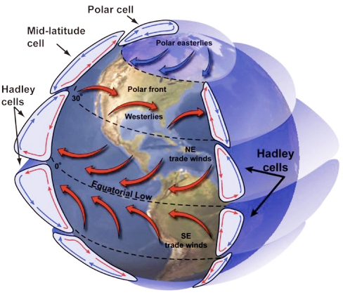 global wind patterns diagram what is the greenhouse effect explained earth 111 water science and society belts inculding hadley cells mid latitude polar
