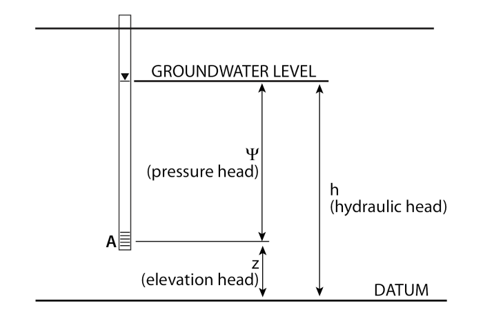 medium resolution of 2 components of hydraulic head datum 2 groundwater level it splits at point