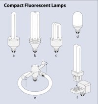 Types of Lighting: Fluorescent Bulbs | EGEE 102: Energy ...