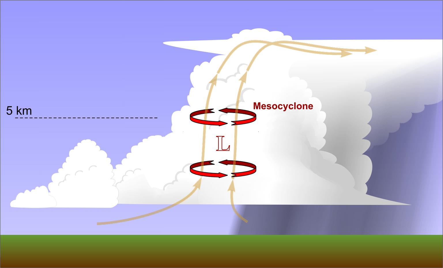 tornado supercell diagram 2002 dodge ram 1500 parts of a apple elsavadorla