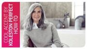 highlight grey hair koleston