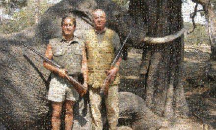 Prólogo «Cuando despertó, el elefante todavía estaba ahí. La imagen del rey en la Cultura Visual 2.0»