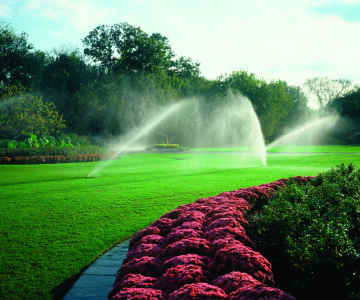 Water Saving Tips for Irrigated Properties