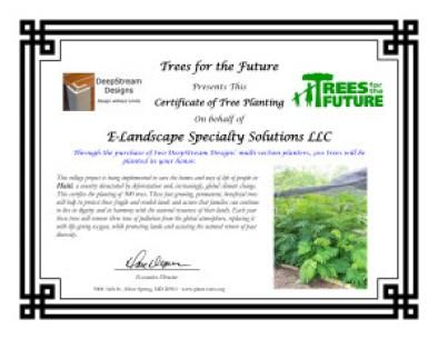 DeepStream-E-Landscape-TreePlantCert