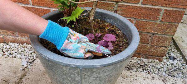 mini rake being used to loosed soil