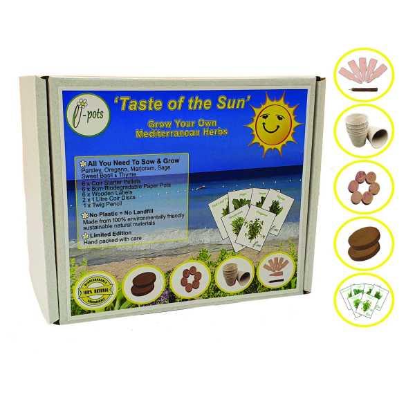 e-pots Grow Your Own Mediterranean Herbs Taste of the Sun Eco Gift Set