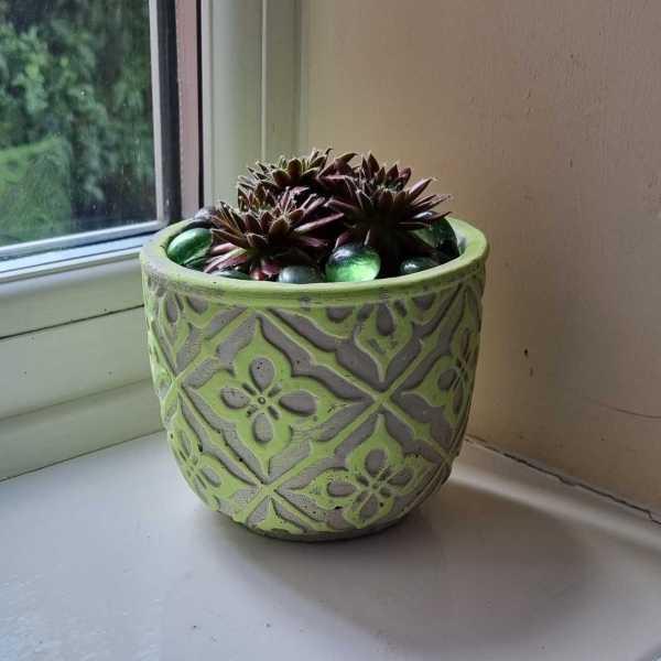 green pattern pot on window sill
