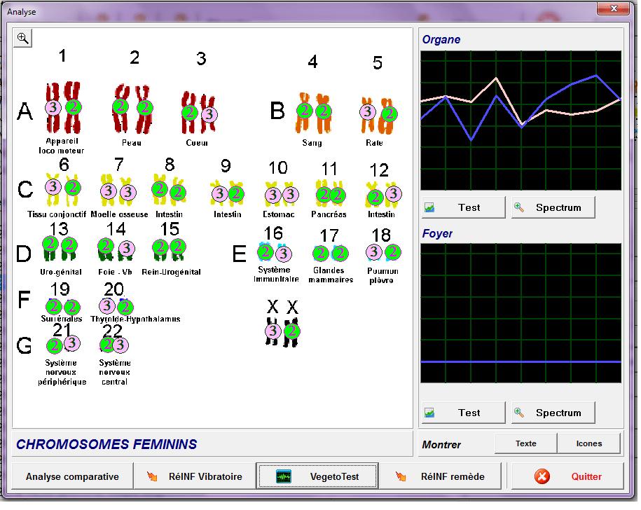 chromosome bilan