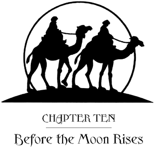 Книга: Season of the Sandstorms: A Merlin Mission