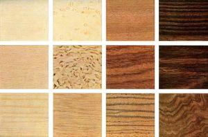 Видове на дървесината