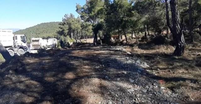 Τα ΜΑΤ μαζί με μηχανήματα καταστρέφουν το δάσος στο Διαβολόρεμα - Εισαγγελέας υπάρχει;