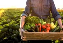 Ο ΟΗΕ προειδοποιεί για σημαντικές ελλείψεις τροφίμων παγκοσμίως