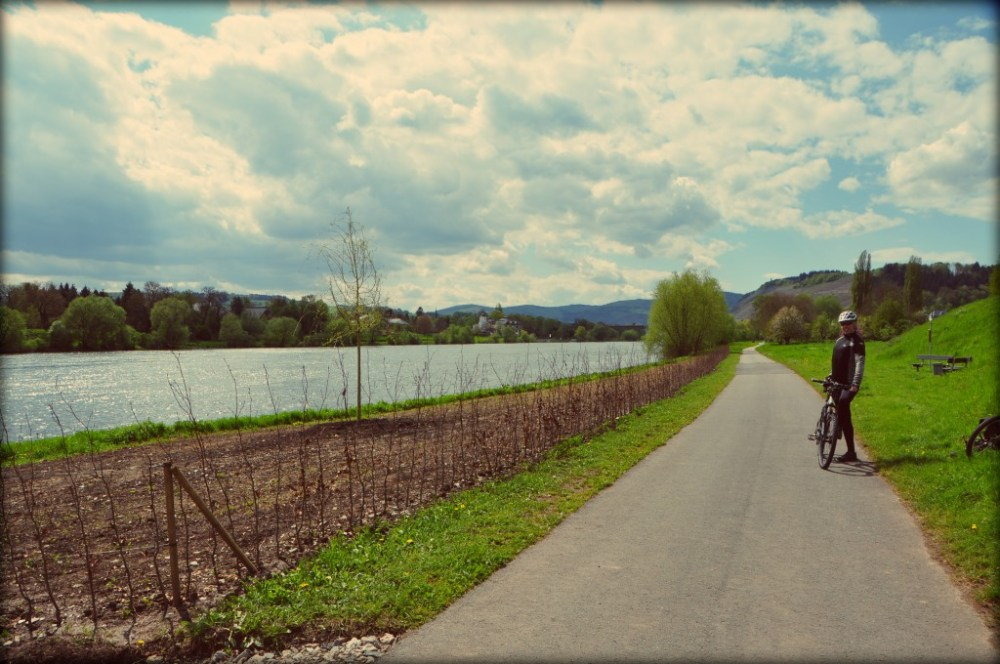 Moselle cycle route