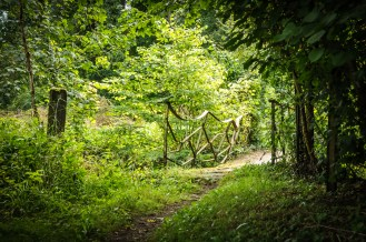 Discover beautiful paths in north and south of Belgium