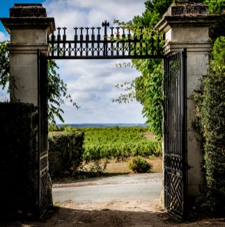 Today, the Domaine aux Moines estate consists of 9,6 hectares of Chenin grapes for Savennieres Roche aux Moines