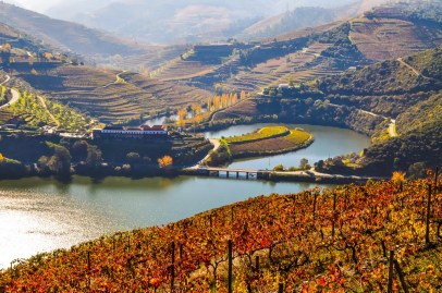 Autumn colours in the beautiful Douro valley
