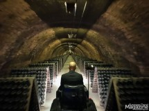 You are taken underground to the cellars to ride a little train in what seems like endless kilometres of cava-filled tunnels