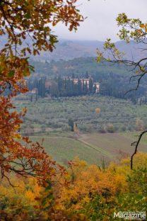 Let your curiosity guide you through the landscape to see how the Chianti countryside looks behind the next hill