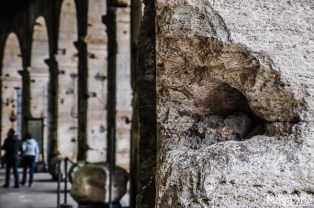 The may holes in the walls were inflicted during the Middle ages, where people would dig out the metal holding the stones together. Tough times!