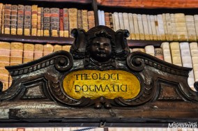 The library features an important collection of about 3,000 Latin, Greek and Oriental manuscripts