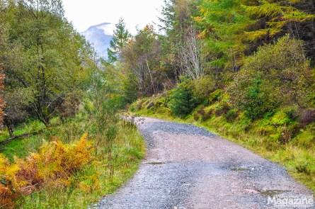 The glen is inviting and several hiking routes makes this a preferable area for trekking, if the weather on Ben Nevis proves too harsh