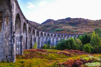 The viaduct is made famous by the Hogwarts steam train ride in the Harry Potter movies