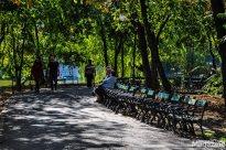 Cismigiu park-3