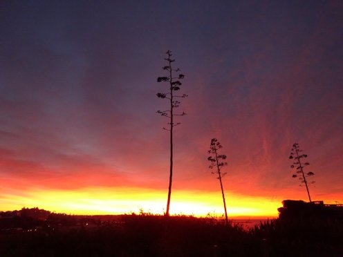 The last sunrise image was also taken on a late December morning when the sky looked set to explode