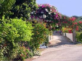 E Zakynthos Villages Mouzaki Zante Zakynthos Greece