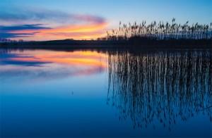 Environmental image - Environmental-image