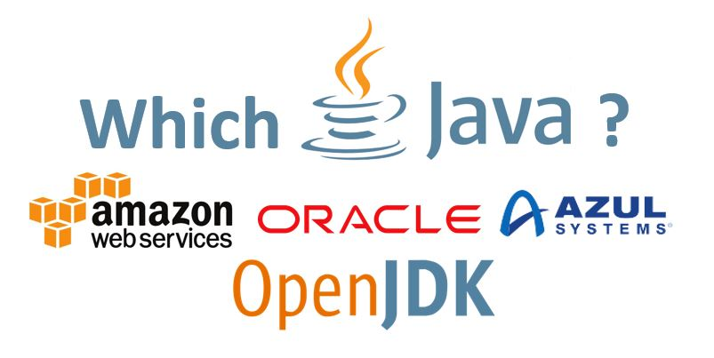 Which Java JDK should I use? Which provide free LTS? | E4developer