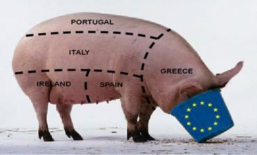Pig-081313.jpg