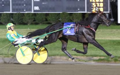 Hot to trot: B'ville horse owner aims high for Hambletonian